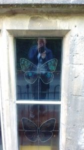 butterfly-window-reflection