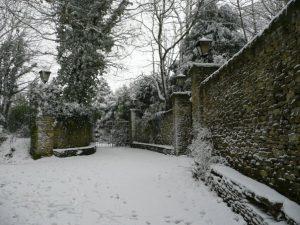 Narnia-like landscape