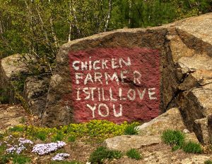 chicken-farmer