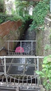Pink umbrella floating in a drainage canal near the bus station