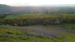 Cam Peak in bluebell season.