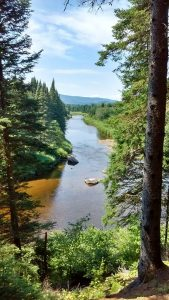 Mountainside view of the Swift Diamond River, bordered by pines, in New Hampshire