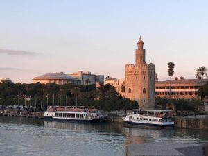 Tower viewed from across the river, with boats in front of it and palm trees and other city buildings around.